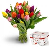 19 тюльпанов + Рафаэлло
