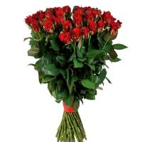 Красные премиум розы