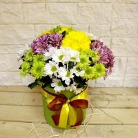 Разноцветные хризантемы в коробке