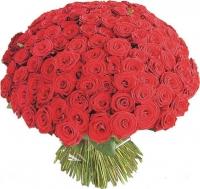 АКЦИЯ по Запорожью !!!!! 101 красная роза
