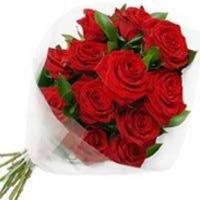 11 роз (цвет на выбор)