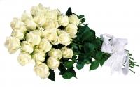 АКЦИЯ!!! 25 белых роз 70 см!!!