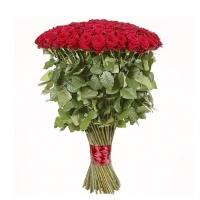 51 гигантская роза