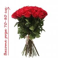 Высокая красная роза по супер цене