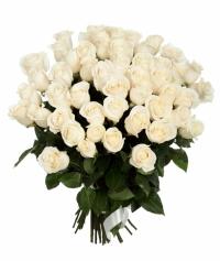 АКЦИЯ по Запорожью !!!!!!! 51 белая роза