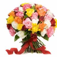 51 разноцветная роза по супер цене