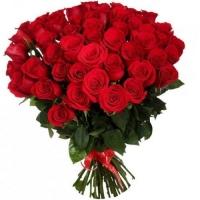51 красная роза 70 см